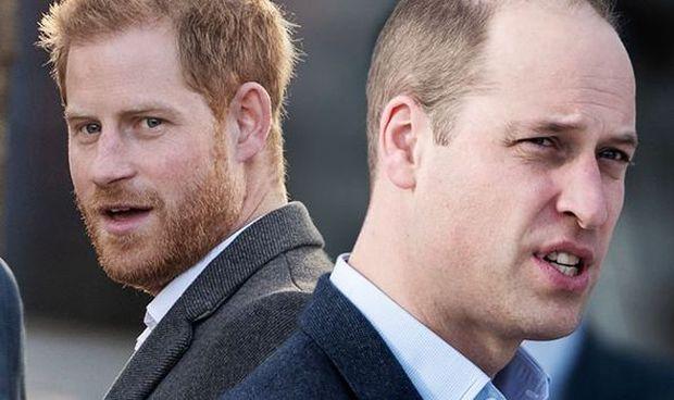 Hoàng tử William đưa ra chia sẻ đầy thâm sâu sau màn chỉ trích gia đình thậm tệ của em trai - Ảnh 2.