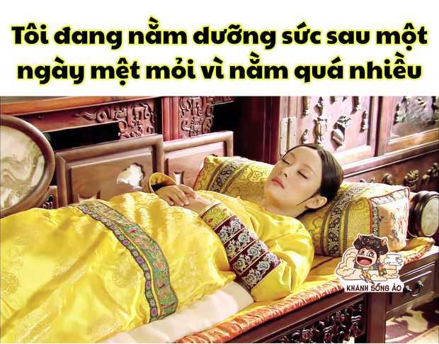Mừng sinh nhật Chân Hoàn với loạt meme cười rớt hàm: Quên sao được mẹ bầu ôm bụng đi hóng drama! - Ảnh 15.