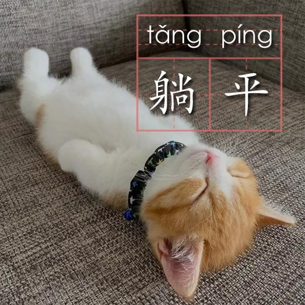 Thế hệ người trẻ quyết định... nằm yên cho sướng, mặc kệ dòng đời ở Trung Quốc - Ảnh 2.