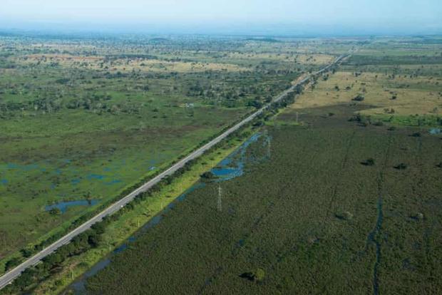 Con đường chết chóc nhất: Mỗi năm 3000 xác chết tại xa lộ tử thần của Brazil, cái giá quá đắt mà thiên nhiên phải trả vì con người - Ảnh 2.