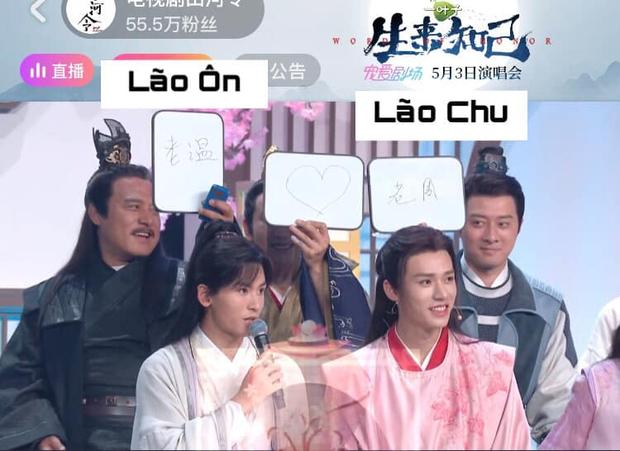 Cung Tuấn - Trương Triết Hạn công khai tình tứ ở siêu concert Sơn Hà Lệnh, còn được dàn cast đẩy thuyền tới bến - Ảnh 2.