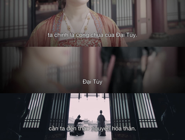 Vợ chồng Triệu Lộ Tư bị fan Việt quay lưng sau Trường Ca Hành, còn bóc ra chi tiết vô lý đùng đùng - Ảnh 6.