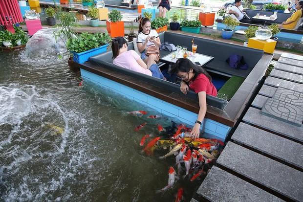 Nhân viên quán cà phê cá Koi đang bê nước cho khách thì bỗng… lọt xuống hồ, phản ứng sau đó mới khiến dân mạng bất ngờ hơn - Ảnh 1.