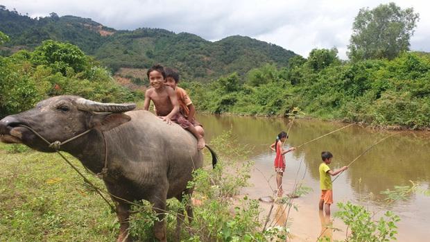 Bán hết tài sản, cặp vợ chồng Vũng Tàu đạp xe chở 2 con nhỏ đi phượt khắp Việt Nam - Ảnh 3.