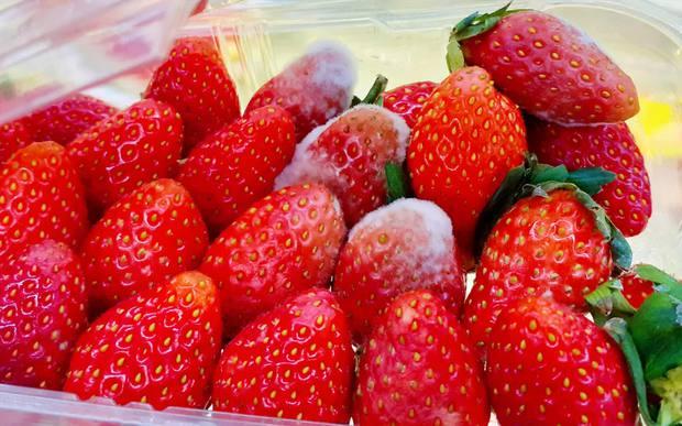 Đôi vợ chồng 9x cùng mắc ung thư gan vì thói quen ăn hoa quả rất nhiều người vẫn làm hàng ngày - Ảnh 2.