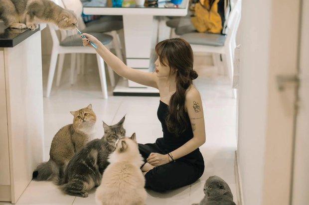 Rước đôi mèo khủng có giá gần 200 trăm triệu, Linh Ngọc Đàm chứng tỏ không chỉ yêu thú cưng mà còn rất giàu có và chịu chi! - Ảnh 1.
