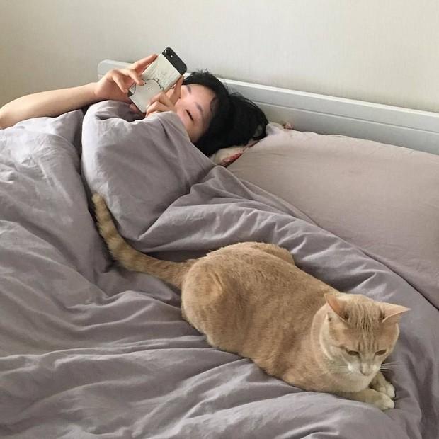 Người có lá gan kém khi ngủ thường gặp 3 biểu hiện bất thường, nếu không có thì tốt quá! - Ảnh 1.