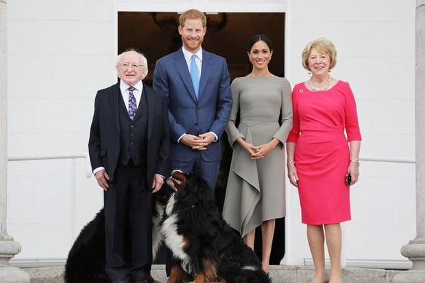 Chó cưng của Tổng thống Ireland càn quét MXH vì màn phá rối chủ nhân đáng yêu chịu không nổi ngay trên sóng trực tiếp quan trọng - Ảnh 5.