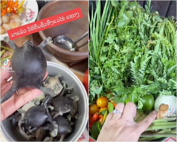 Người Thái sở hữu 1 món siêu kinh dị, từng có người vừa thấy ngất xỉu tại chỗ nhưng ở Việt Nam cũng ăn con vật này? - Ảnh 2.