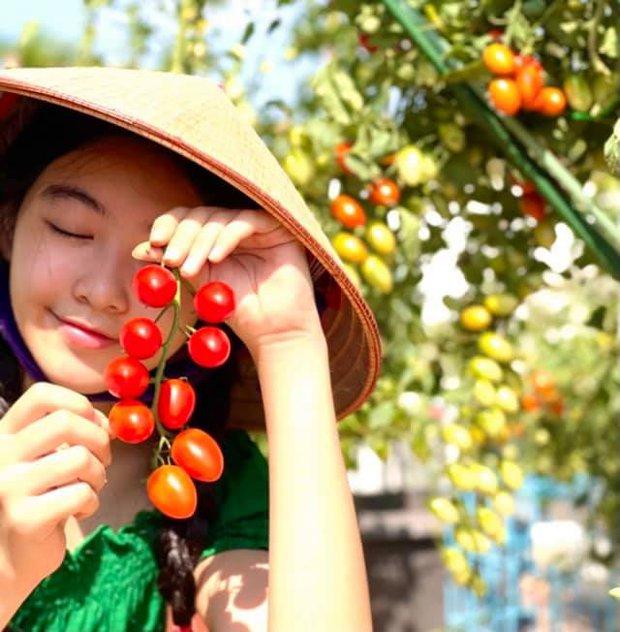 Con gái Quyền Linh đi làm vườn mà bùng nổ visual với vẻ ngoài xinh xỉu, để mặt mộc cũng không thể dìm được - Ảnh 3.