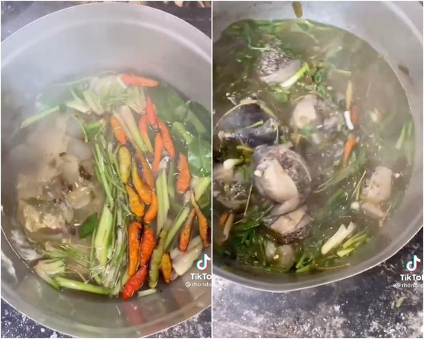 Người Thái sở hữu 1 món siêu kinh dị, từng có người vừa thấy ngất xỉu tại chỗ nhưng ở Việt Nam cũng ăn con vật này? - Ảnh 3.