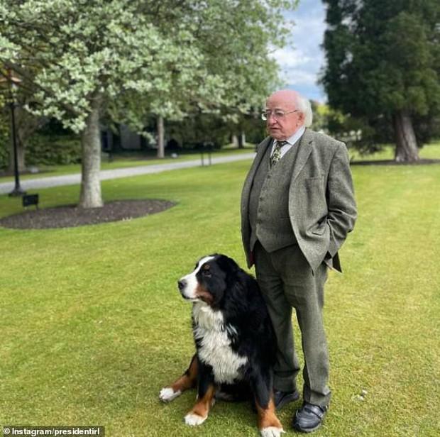 Chó cưng của Tổng thống Ireland càn quét MXH vì màn phá rối chủ nhân đáng yêu chịu không nổi ngay trên sóng trực tiếp quan trọng - Ảnh 3.
