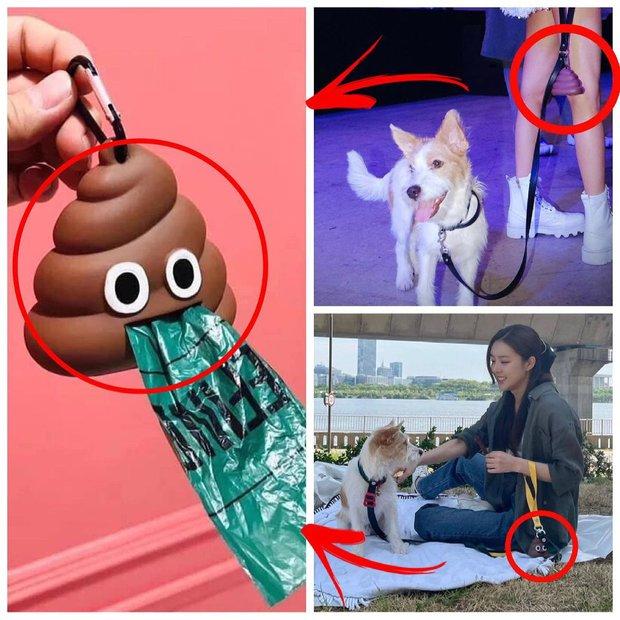 Rosé đi đâu cũng mang theo phụ kiện dọn dẹp nỗi buồn cho cún cưng, từ 20k bạn cũng sắm được chiếc na ná - Ảnh 3.