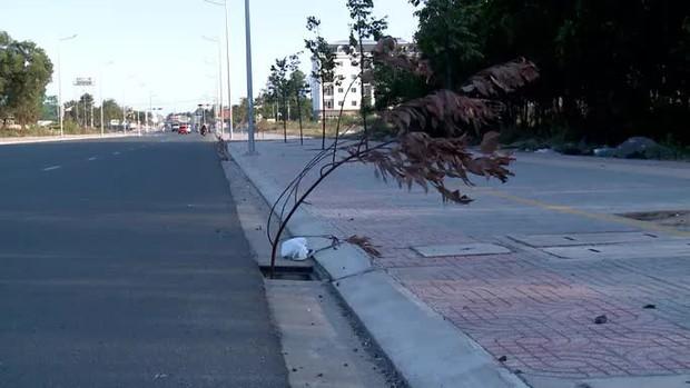 Kinh hoàng thấy hàng loạt chiếc bẫy trên đường ở Phú Mỹ - Ảnh 2.