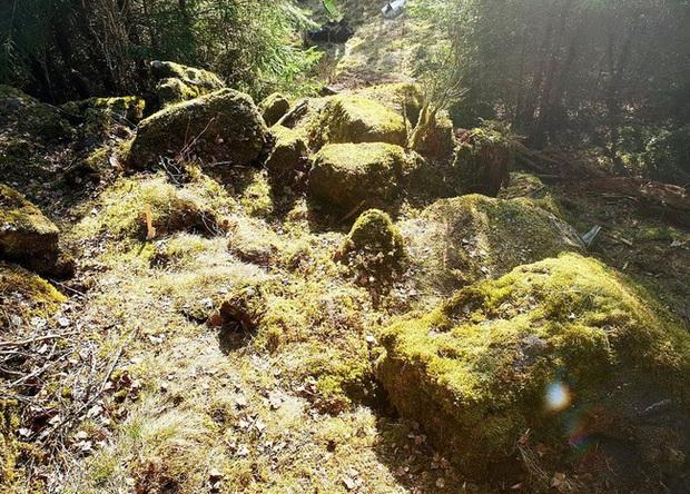 Đi bộ trong rừng, người đàn ông nhìn thấy thứ tưởng là rác nào ngờ vớ được kho báu vô giá khiến các nhà khoa học phải thốt lên: Phi thường - Ảnh 3.
