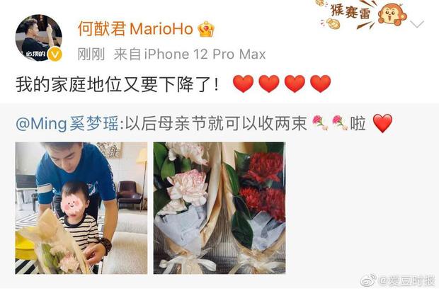 Gia tộc sòng bạc Macau đón tin vui: Ming Xi chính thức tuyên bố mang bầu lần 2 khi tiểu quý tử đầu lòng mới 1 tuổi rưỡi - Ảnh 3.