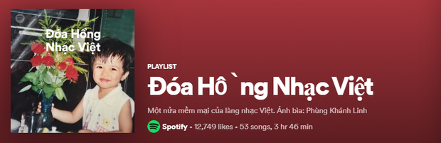 Lên ngay Spotify tìm playlist của dàn nghệ sĩ Vpop: Hoàng Thùy Linh, Bích Phương, Binz, AMEE,... đều bị đổi thành ai lạ hoắc thế này? - Ảnh 12.