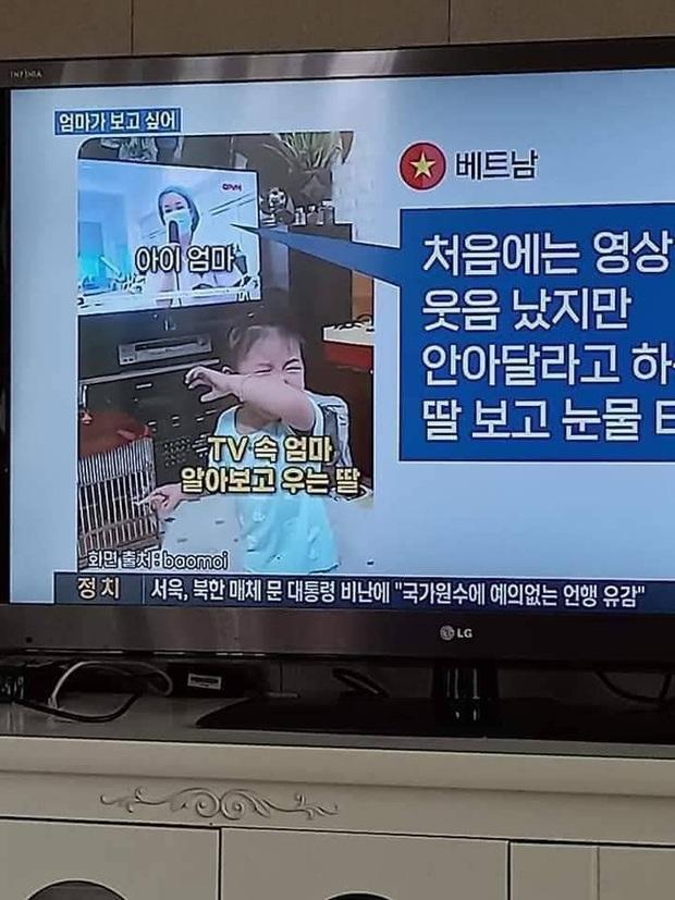 Đoạn clip em bé khóc nức nở khi thấy mẹ trong tivi được truyền hình Hàn Quốc phát sóng, lay động hàng triệu người xem xứ Hàn - Ảnh 1.
