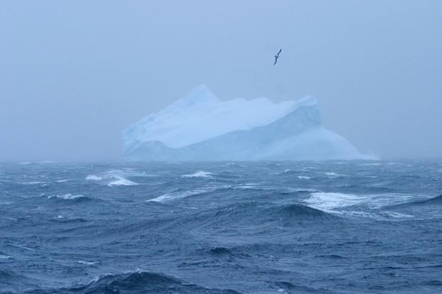 5 châu 4 bể chính thức là câu nói lỗi thời: Thế giới vừa có thêm đại dương thứ 5 - Ảnh 2.