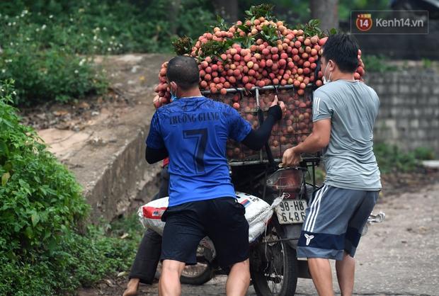 Bắc Giang: Kiếm tiền triệu từ việc đẩy xe chở vải lên dốc cầu phao trong mùa thu hoạch - Ảnh 9.