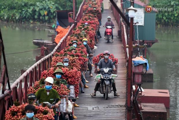 Bắc Giang: Kiếm tiền triệu từ việc đẩy xe chở vải lên dốc cầu phao trong mùa thu hoạch - Ảnh 7.