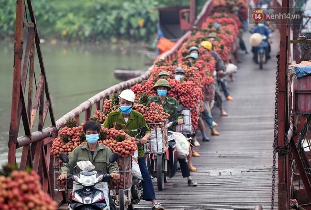 Bắc Giang: Kiếm tiền triệu từ việc đẩy xe chở vải lên dốc cầu phao trong mùa thu hoạch - Ảnh 12.