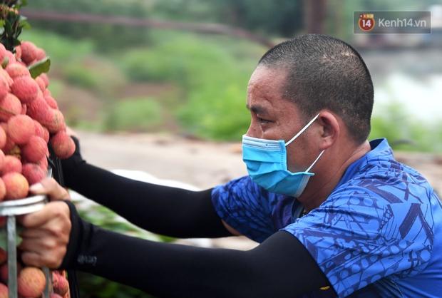 Bắc Giang: Kiếm tiền triệu từ việc đẩy xe chở vải lên dốc cầu phao trong mùa thu hoạch - Ảnh 5.