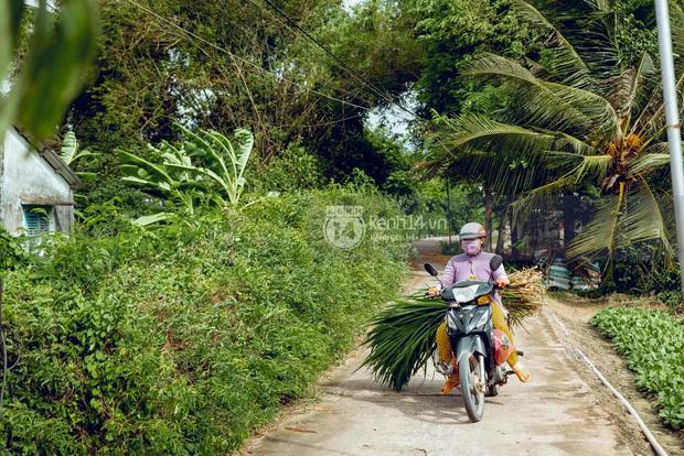 Trực tiếp đến Tiền Giang: Đau lòng khi thấy nhà Hồ Văn Cường bị bỏ hoang, hàng xóm kể lâu rồi không thấy bố mẹ ruột và Phi Nhung về thăm - Ảnh 23.