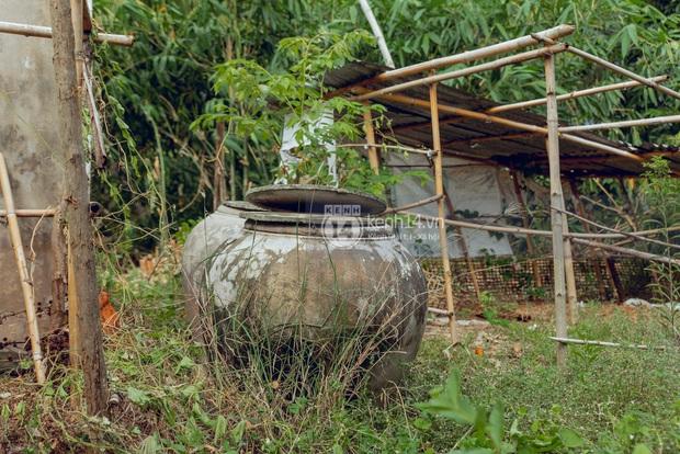 Trực tiếp đến Tiền Giang: Đau lòng khi thấy nhà Hồ Văn Cường bị bỏ hoang, hàng xóm kể lâu rồi không thấy bố mẹ ruột và Phi Nhung về thăm - Ảnh 14.