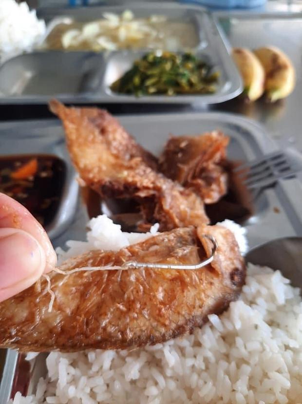 """Đi ăn cơm hàng, cô nàng rùng mình khi tìm thấy lưỡi câu từ miệng con cá, dân mạng lại chỉ ra 1 điểm đáng """"lạc quan"""" - Ảnh 3."""
