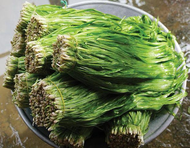 Miền Tây có 1 loại rau được gọi là lộc trời cho, mỗi năm chỉ có đúng 1 mùa nên ai cũng tranh thủ ăn - Ảnh 1.