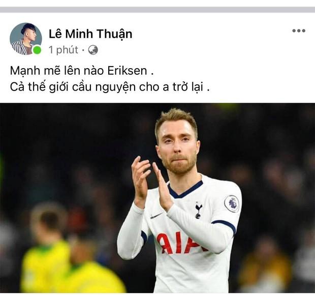 Diệu Nhi bật khóc, Trịnh Thăng Bình và dàn sao Việt cầu nguyện cho cầu thủ Erikse tuyển Đan Mạch đột quỵ trên sân đấu Euro - Ảnh 13.