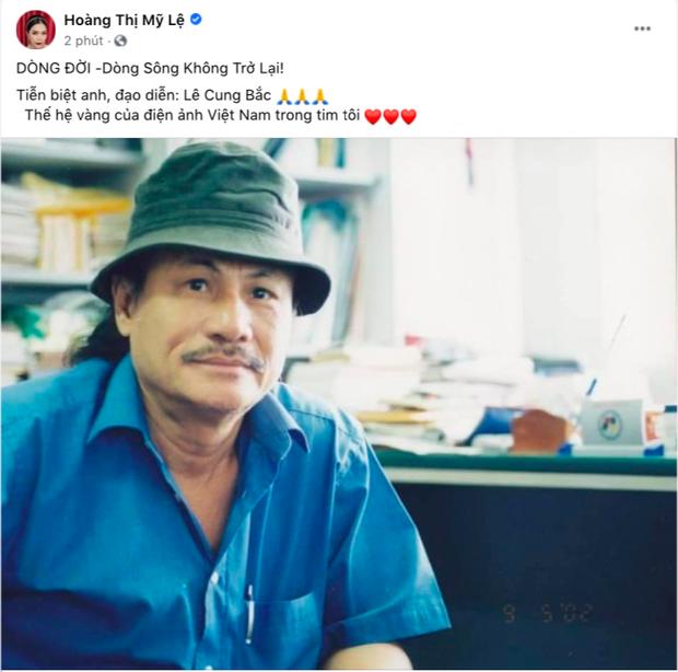 Đạo diễn phim Người Đẹp Tây Đô đột ngột qua đời, Thu Minh - Trịnh Kim Chi cùng dàn sao Vbiz xót xa nói lời tiễn biệt - Ảnh 6.