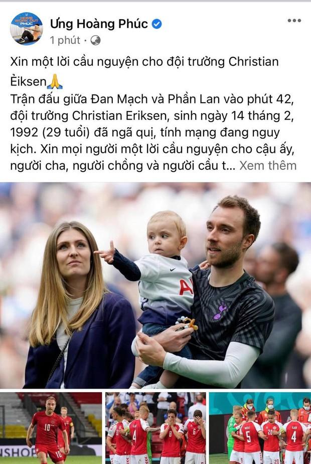 Diệu Nhi bật khóc, Trịnh Thăng Bình và dàn sao Việt cầu nguyện cho cầu thủ Erikse tuyển Đan Mạch đột quỵ trên sân đấu Euro - Ảnh 8.