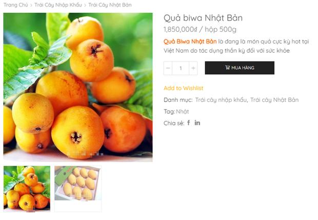 Nhật Bản có loại quả mọc dại đầy đường không ai hái, về đến Việt Nam có giá lên tới 4 triệu/kg, chỉ dành cho hội nhà giàu? - Ảnh 3.