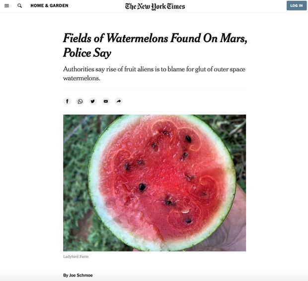 New York Times vừa xác nhận phát hiện cả một ruộng dưa hấu trên sao Hỏa và sự thật khiến nhiều người phải bật cười - Ảnh 1.