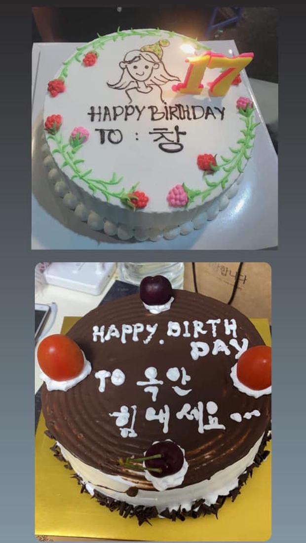 Cô gái yêu cầu viết lên bánh kem dòng chữ Happy Birthday như ảnh, thấy thành phẩm xong khổ chủ xỉu luôn 8 ngày chưa tỉnh - Ảnh 7.