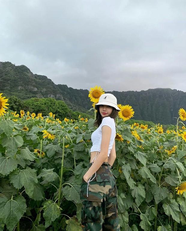 Lisa (BLACKPINK) trở thành idol Kpop đầu tiên cán mốc 54 triệu followers trên Instagram, xác lập luôn 4 kỷ lục - Ảnh 6.