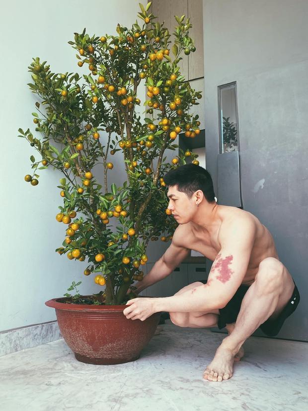 Noo Phước Thịnh trở lại sóng truyền hình: Là báo đen đơn độc nhưng mạnh mẽ, Sàn Đấu Vũ Đạo sẽ rất drama! - Ảnh 4.