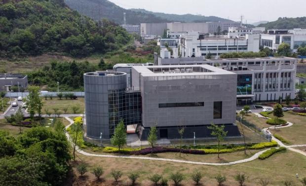 Viện Virus học Vũ Hán phủ nhận giả thuyết virus SARS-CoV-2 rò rỉ từ phòng thí nghiệm - Ảnh 1.