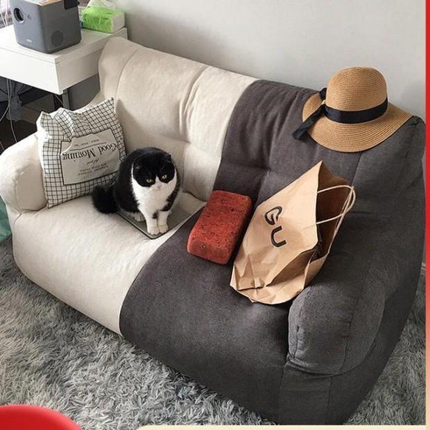 Thiều Bảo Trâm và Linh Ngọc Đàm mới tậu sofa đôi, có mấy shop bán mẫu na ná nhìn xinh chẳng kém - Ảnh 6.