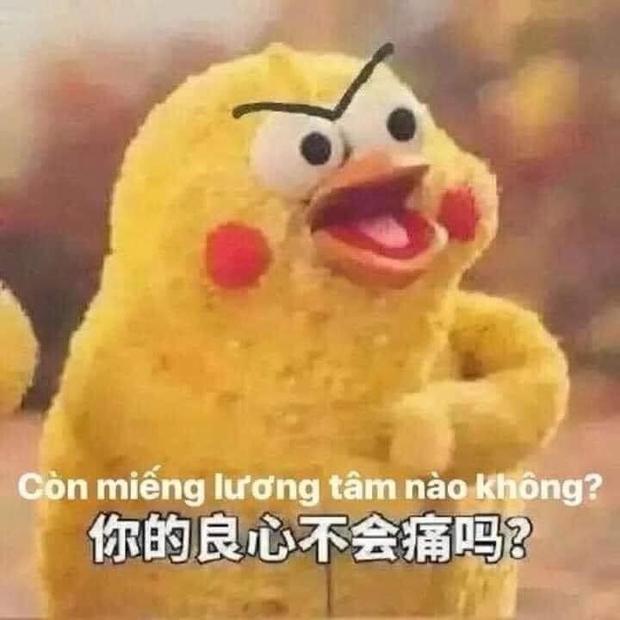 Sau trận đấu UAE - Việt Nam, cộng đồng mạng lại đua nhau chế meme cực hài hước, nhưng sao tâm điểm lại là âm nhạc? - Ảnh 3.