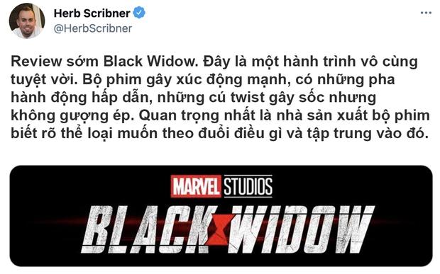 Bom tấn Black Widow được khen tới tấp, Marvel ghi điểm vì mức độ cháy khét lẹt của dàn mỹ nhân - Ảnh 4.
