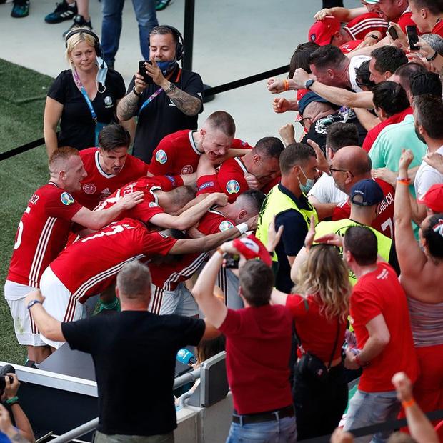 Bất ngờ phá lưới ĐT Pháp, cầu thủ Hungary ăn mừng quá sung khiến nữ phóng viên hết hồn nhưng phản ứng ngay sau đó mới viral khắp cõi mạng - Ảnh 8.