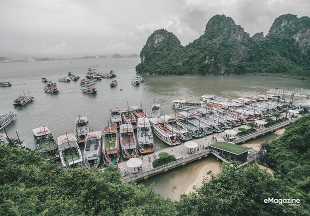 HOT: Quảng Ninh tung gói kích cầu du lịch 258 tỷ, miễn phí 100% vé tham quan vịnh Hạ Long! - Ảnh 6.