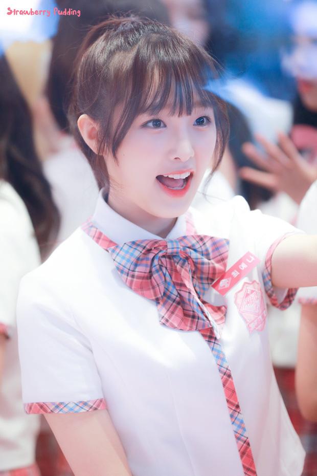 Công ty mới của Hanbin: Sở hữu Vương Nhất Bác, Phạm Thừa Thừa và idol Kpop nổi bật nhưng vì sao fan lại không hài lòng? - Ảnh 8.