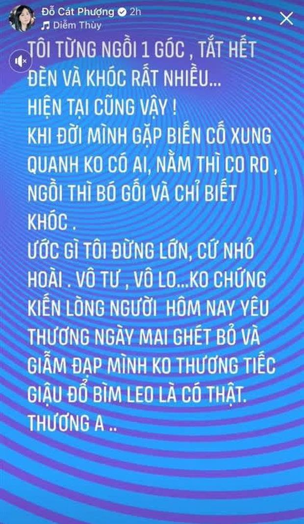 Cát Phượng tung bằng chứng bảo vệ NS Hoài Linh, khẳng định luôn: Nếu chửi ai đó lòng bạn thấy nhẹ nhàng thì cứ tiếp tục - Ảnh 5.