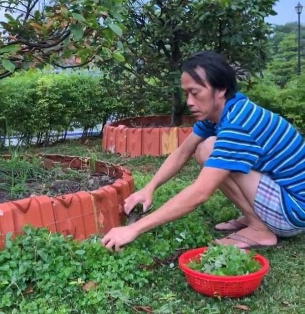 Nhà thờ hơn 100 tỷ của Hoài Linh hàng năm tổ chức lễ Giỗ Tổ sân khấu quy tụ hàng trăm nghệ sĩ, còn nuôi động thực vật quý hiếm với giá trị khủng - Ảnh 11.
