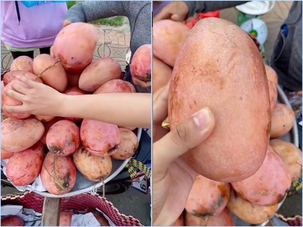 Lần đầu thấy trái xoài màu hồng có ngoại hình béo núc ních ở Việt Nam, thanh niên lên mạng hỏi giống gì thì bị doạ đến xanh mặt - Ảnh 2.