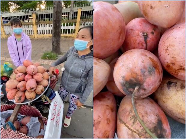Lần đầu thấy trái xoài màu hồng có ngoại hình béo núc ních ở Việt Nam, thanh niên lên mạng hỏi giống gì thì bị doạ đến xanh mặt - Ảnh 3.